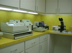 Our lab area, with our microscope and in-house IDEXX equipment for blood panels